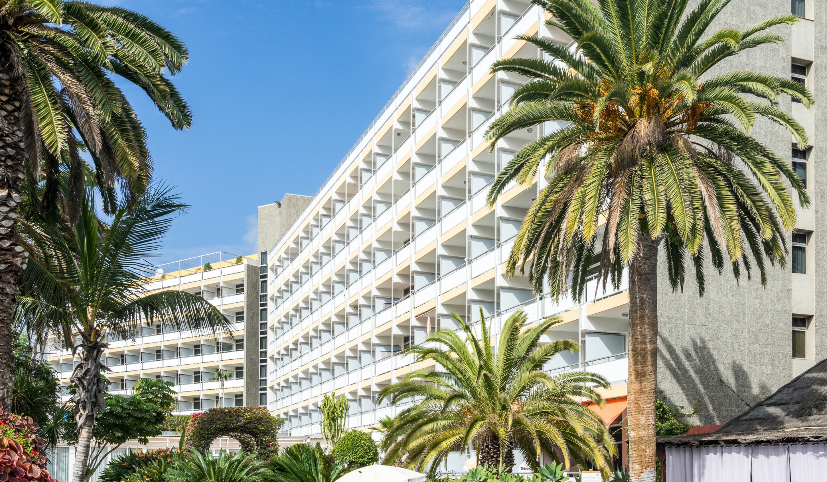 Interpalace by Blue Sea